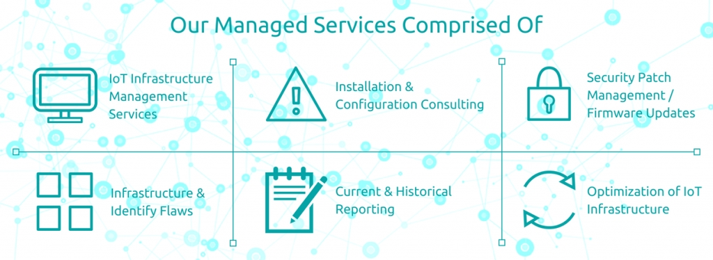 IOT Management Services